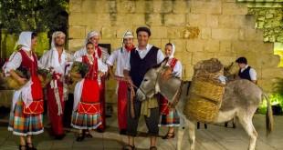 Maltese Night