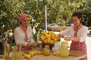 Limoncello-Making-1